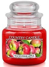 Parfumuri și produse cosmetice Lumânare aromată în suport de steclă - Country Candle Macintosh Apple