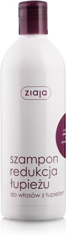 Șampon anti-mătreață cu extract de ridiche neagră - Ziaja Shampoo
