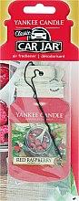 Parfumuri și produse cosmetice Aromatizator auto - Yankee Candle Car Jar Red Raspberry