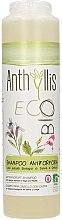 Parfumuri și produse cosmetice Șampon împotriva mătreții - Anthyllis Anti Dandruff Shampoo