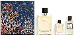 Parfumuri și produse cosmetice Hermes Terre d'Hermes - Set (edt/100ml + edt/12.5ml + ash/balm/40ml)