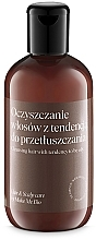 Parfumuri și produse cosmetice Șampon pentru păr gras - Make Me BIO