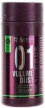 Parfumuri și produse cosmetice Pudră pentru păr - Salerm Pro Line Volume Dust 01 Mattifying Powder