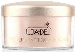 Parfumuri și produse cosmetice Pudra pulbere - Ga-De Translucent Loose Face Powder