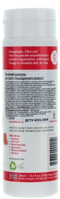Șampon pentru păr uscat și deteriorat - Bentley Organic Shampoo For Dry & Damaged Hair — Imagine N2