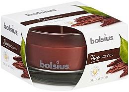 """Parfumuri și produse cosmetice Lumânare parfumată """"Arbore de agar"""", 50x80 mm - Bolsius"""