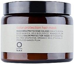 Parfumuri și produse cosmetice Mască pentru păr vopsit - Rolland Oway ColorUp (sticlă)