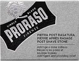 Parfumuri și produse cosmetice Produs pentru bărbierit - Proraso Post Shave Alum Stone