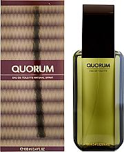Parfumuri și produse cosmetice Antonio Puig Quorum - Apă de toaletă