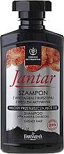 Parfumuri și produse cosmetice Șampon detoxifiant cu carbon activat - Farmona Jantar Detoxifying Shampoo With Active Charcoal