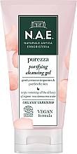 Parfumuri și produse cosmetice Gel de curățare pentru față - N.A.E. Purezza Purifying Cleansing Gel