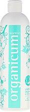 """Șampon de păr """"Mentă"""" - Terapi Organicum Hydrosolkomplex Shampoo — Imagine N2"""