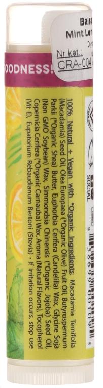 Balsam de buze - Crazy Rumors Peppermint Lemongrass Lip Balm — Imagine N2