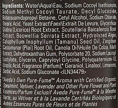 Șampon - Aveda Men Pure-Formance Shampoo — Imagine N2