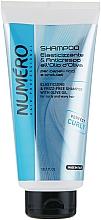 Parfumuri și produse cosmetice Șampon cu ulei de măsline pentru păr creț - Brelil Numero Elasticizing Shampoo