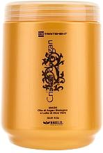 Parfumuri și produse cosmetice Mască regenerantă cu ulei de Argan și Aloe - Brelil Bio Traitement Cristalli d'Argan Mask Deep Nutrition