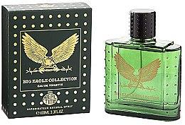 Parfumuri și produse cosmetice Real Time Big Eagle Collection Green - Apă de toaletă