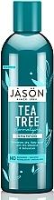 Parfumuri și produse cosmetice Șampon normalizator «Arbore de ceai» - Jason Natural Cosmetics Tea Tree Treatment Shampoo